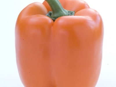 Capsicum-Orange-57990 - 114 KB
