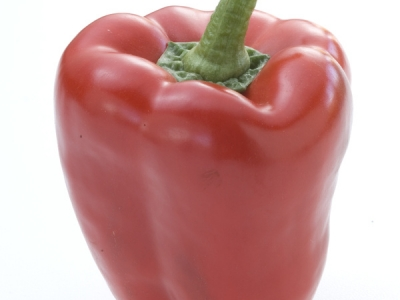 Capsicum-Red-57601 - 3.2 MB