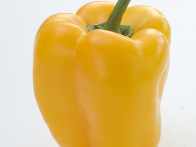 Capsicum-Yellow-57602 - 4.9 MB