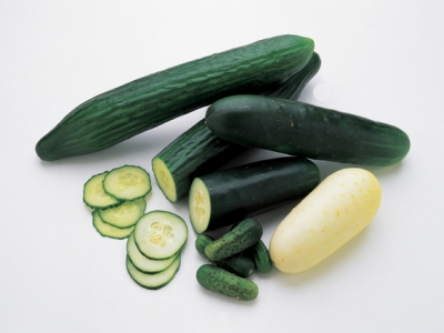Cucumbers-Varieties-57628 - 1.9 MB