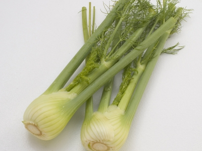 Fennel-Large-57776 - 5.4 MB