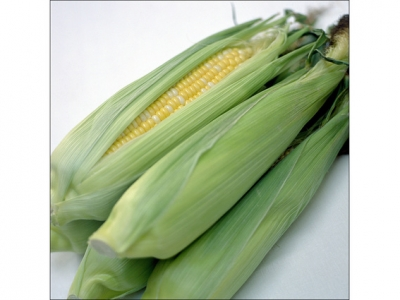 Sweet-Corn-57696 - 2.3 MB