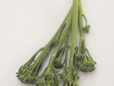 Broccolini-01-57543 - 3.3 MB