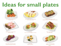 For Small Plates Cover