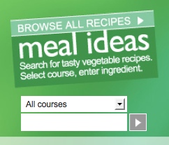 image of the meal ideas search box