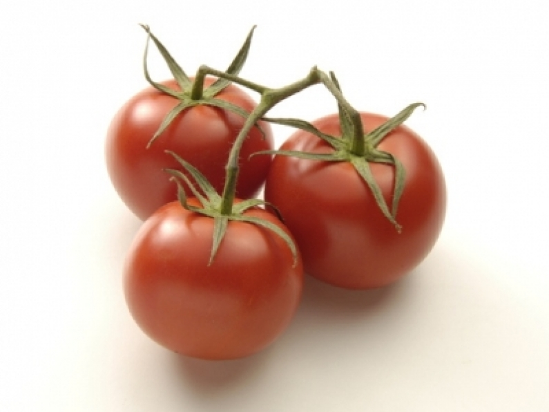 533Tomatoes Truss 57724