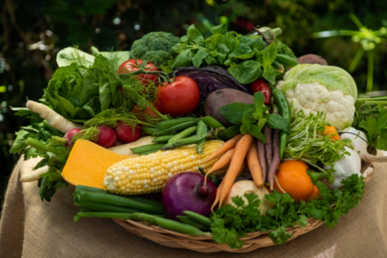 Basket of vegetables small5