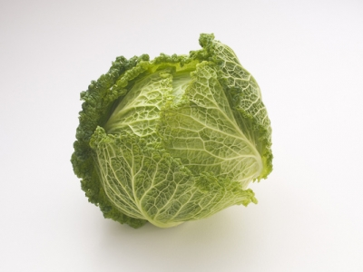Cabbage-Savoy-Head-57593 - 5.2 MB