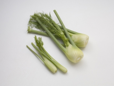 Fennel-Large-And-Baby-57774 - 5 MB