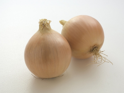 Onion-Main-Crop-57120 - 5.6 MB