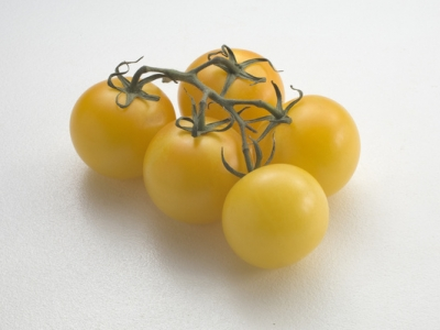 Tomato-Yellow-Vine-57591 - 5.6 MB