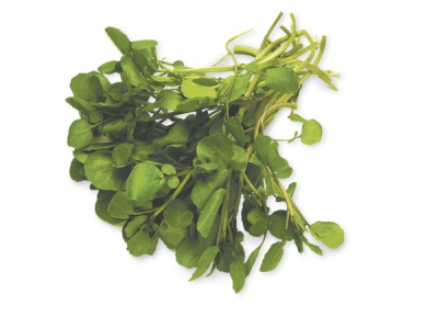 Watercress-57709 - 653 KB