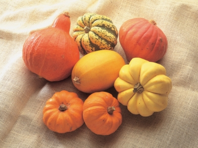 Pumpkins-And-Winter-Squashs-57682 - 2.1 MB