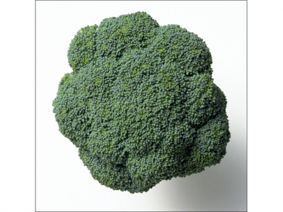 Broccoli-Head-57541 - 1.4 MB