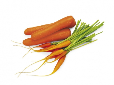 Vegetables-Users-Guide-Images-58551 - 2.2 MB