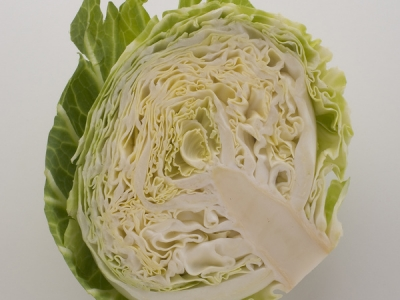 Cabbage-Half-57549 - 4.3 MB