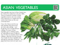 Asian Vegetables Poster Cover