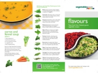 Flyer Flavours 1