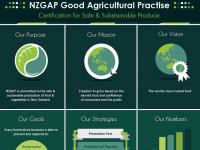 NZ Gap Leaflet