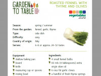Roasted fennel recipe12