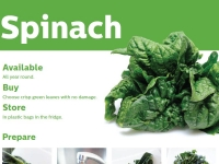 spinach2