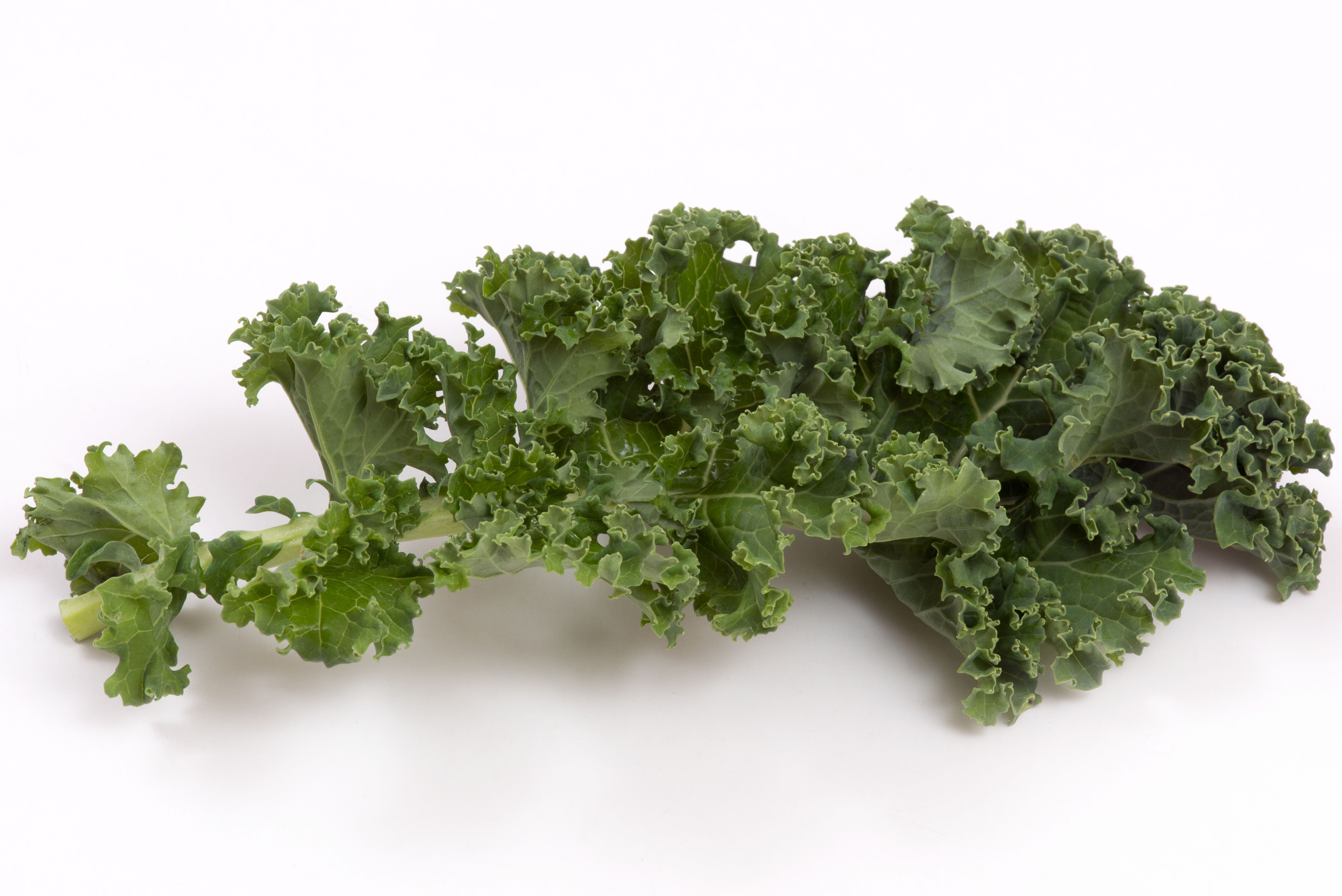 About kale vegetable